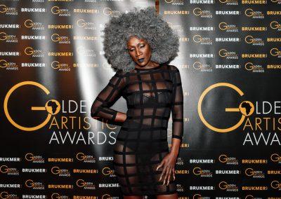 Golden Artistic Awards - Brukmer-28